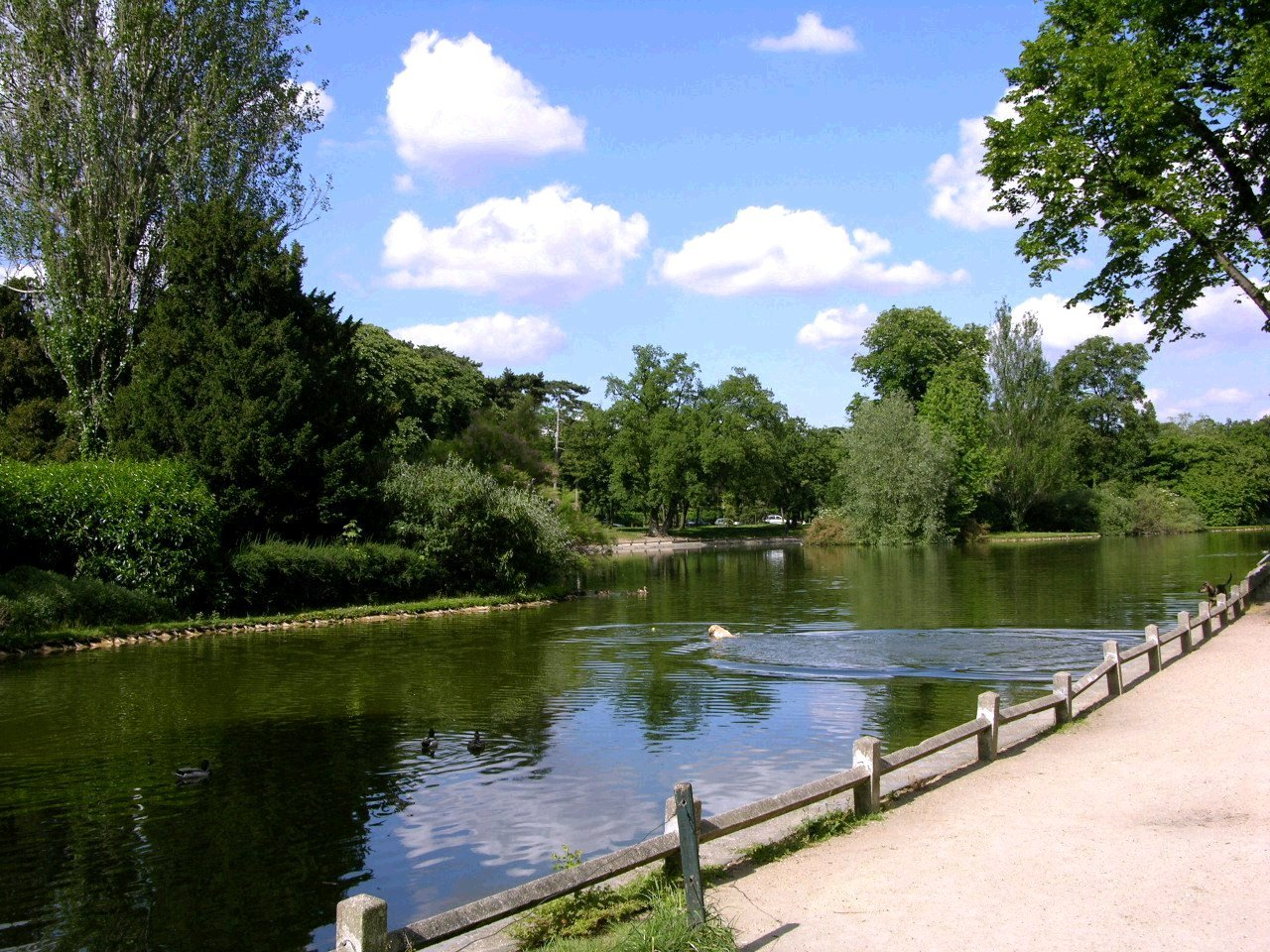 Image Bois De Boulogne : Bois de Boulogne-01 – Vue de la mare(ou ?tang) de Saint-James (1280 x
